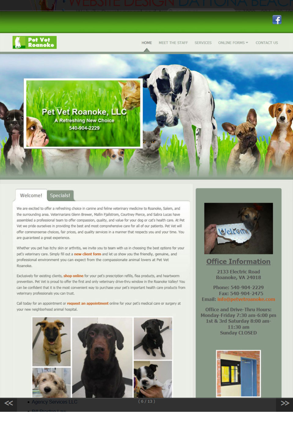 Pet Vet Roanoke Website Design