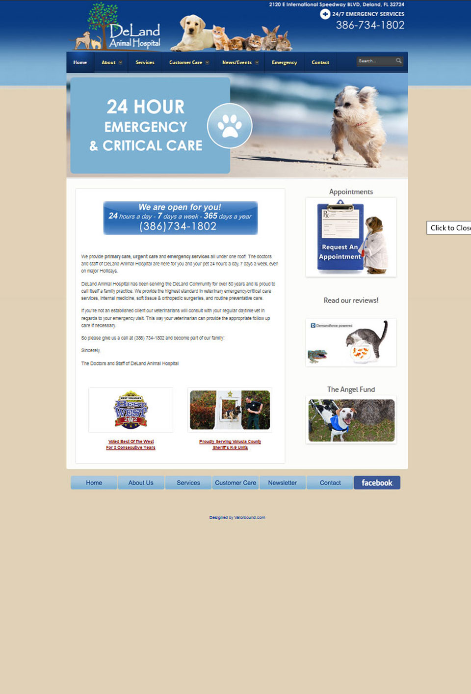 Deland Animal Hospital Website Design