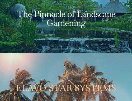 Elavo Star Systems